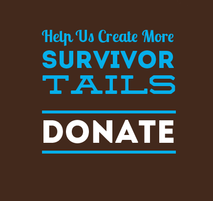 Donate to Survivor Tails